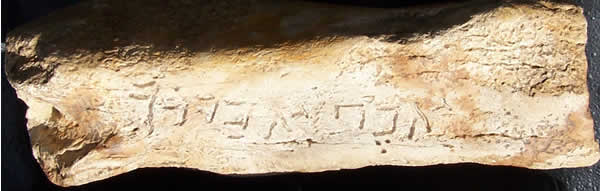 Bone inscription