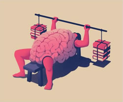 Illustration of a brain bench pressing books