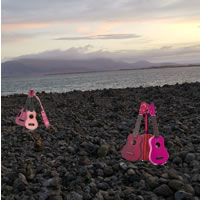 Ukuleles On The Shore